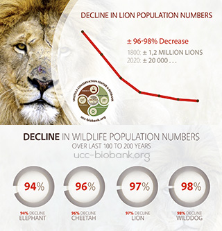 Lion Numbers